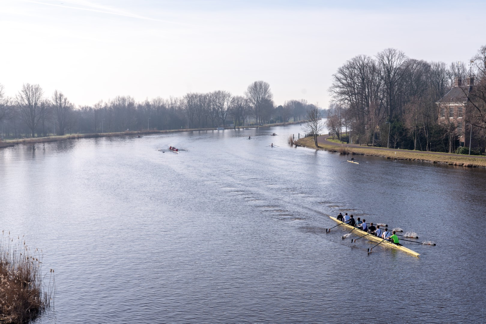 Rowing on the Amstel