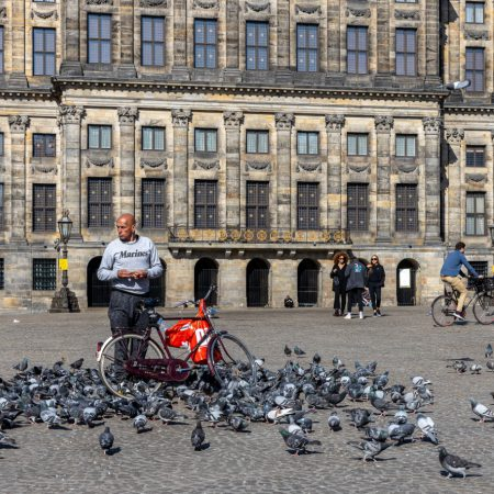 Dam Amsterdam. Feed the pigeons.